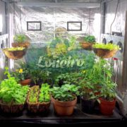 Lona 2,0 x 1,0m Loneiro 300 Micras Metalizada de um lado e Branca do outro sem acabamento para estufa grow jardim cultivo indoor de plantas