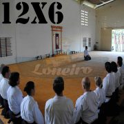 Lona: 12,0 x 6,0m para Tatame Encerado Algodão Premium Anti-Derrapante Cotton RipStop Caqui : Akido Judo JiuJitSu Muay-Thay Boxe MMA UFC Academia