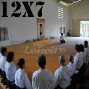 Lona: 12,0 x 7,0m para Tatame Encerado Algodão Premium Anti-Derrapante Cotton RipStop Caqui : Akido Judo JiuJitSu Muay-Thay Boxe MMA UFC Academia