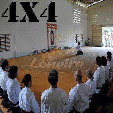 Lona 4,0 x 4,0m para Tatame Encerado Algodão Premium Anti-Derrapante Cotton RipStop Caqui : Akido Judo JiuJitSu Muay-Thay Boxe MMA UFC Academias
