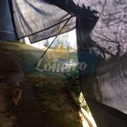 ad. LONA TELA PEAD SOMBREAMENTO LUZ SOLAR PERMEÁVEL RESISTENTE DURABILIDADE LONEIRO (6)